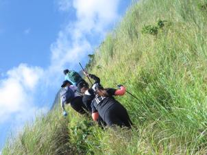 grassland 5